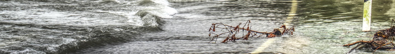 banner flood